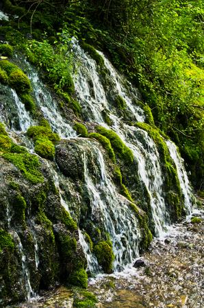tara: Wellspring and cascade at Tara mountain and national park, west Serbia Stock Photo