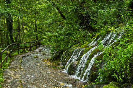 tara: Wellspring and cascade at Tara mountain and national park, west Serbia Stock Photo