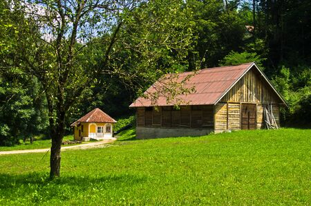 serbia landscape: Landscape at Tara mountain and national park, west Serbia
