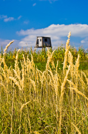 watchtower: Hunting watchtower on a mountain meadow at sunny autumn afternoon, east Serbia Stock Photo