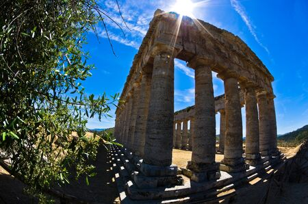 segesta: Old greek temple and olive tree at Segesta Sicily Italy Stock Photo