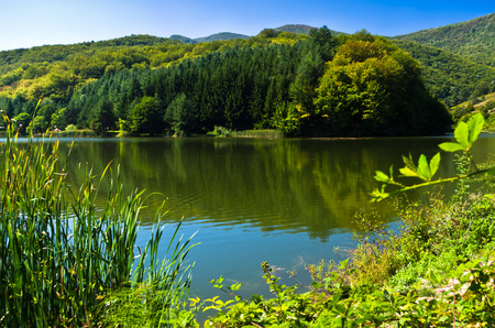 tranquilly: Beautifull nature and greenery at the lake in Semenic national park, Banat region, west Romania