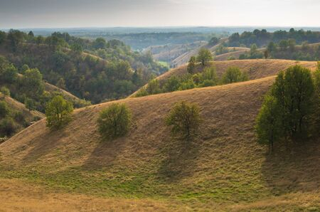 serbia landscape: Landscape of hills covered with yellow grass at sunny autumn afternoon, north Serbia