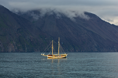 whale watching: Whale watching tours from old sailing ship at Husavik bay area, north Iceland