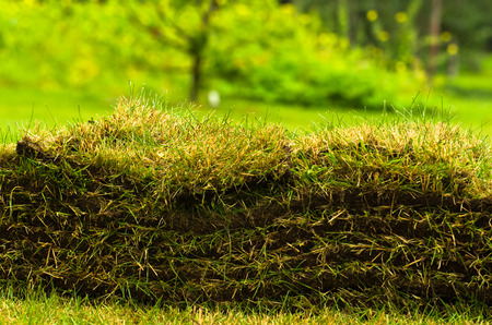 turf pile: Pile of turf layers in a park at city of Reykjavik, Iceland