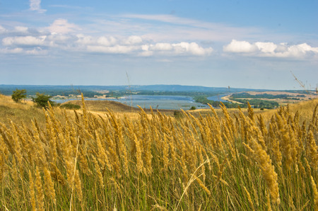 danubian: Landscape with dry yellow grass fields near Danube river in Serbia