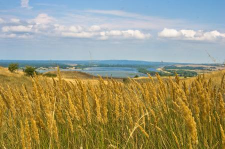 danubian: Landscape with dry yellow grass fields near Danube river in Serbia