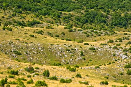 serbia landscape: Karst sinkholes, detail from Pester plateau landscape in southwest Serbia
