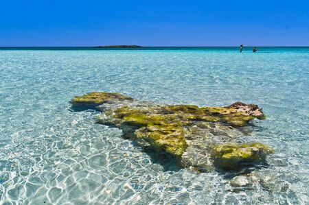 clear waters: Amazing beauty of shallow crystal clear waters at Elafonisi beach, island of Crete, Greece