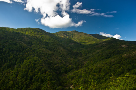 serbia landscape: Landscape and cloudscape of Troglav mountain at late summer, west Serbia