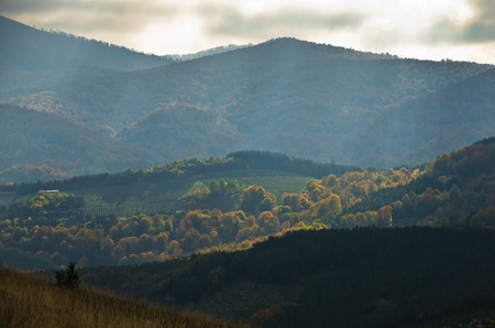 Overcast sky over meadows and colorful forests at autumn, mountain Goc, Serbia