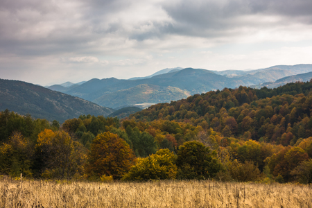 Overcast sky over forest in autumn colors, mountain Goc, Serbia