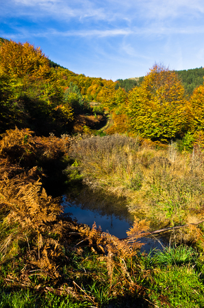Small pond at colorful autumn scene with forest at rolling hills of Zeljin mountain, Serbia Stock Photo