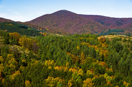 Autumn forest and meadows colors at rolling hills of Zeljin mountain, Serbia