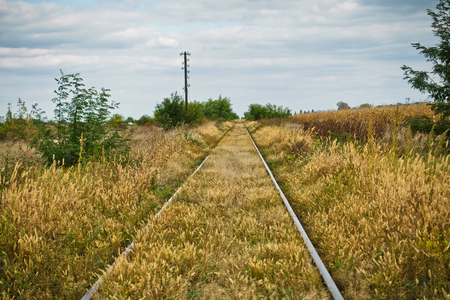 Railroad tracks at flat prarie area in north Serbia
