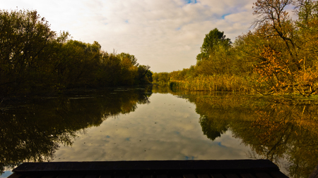 Boat is sailing through swamp channels on a sunny morning at protected natural swamp area of Carska bara, large natural habitat for birds and other animals in north Serbia Stock Photo