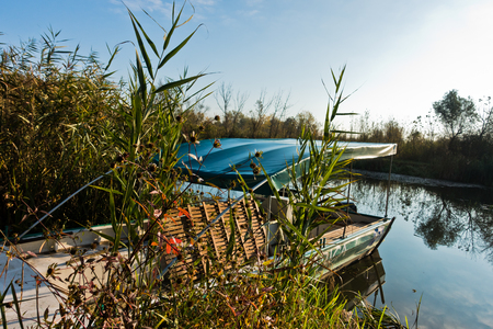 Boat on a sunny morning at protected natural swamp area of Carska bara, large natural habitat for birds and other animals in north Serbia Stock Photo