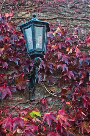 Old lantern on a fortress wall surrounded with red leaves in autumn at Kalemegdan, Belgrade, Serbia Stock Photo