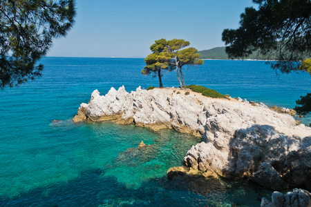 Pine tree on a rock over crystal clear turquoise water, Cape Amarandos at Skopelos island, Greece Stock Photo