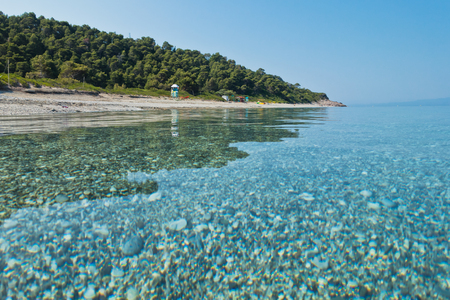 Calm and crystal clear turquoise sea water at morning, Milia beach, island of Skopelos, Greece