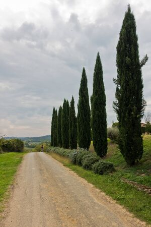 Hiking hills, backroads and vineyards at autumn, near Siena in Tuscany, Italy