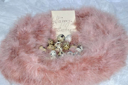 quail nest: Quail eggs in a nest of pink feathers with the words Happy Easter