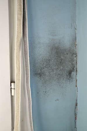 ひびの入った壁と窓際の壁にカビします。 写真素材