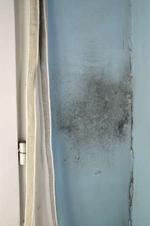 Mold on the wall by the window with cracked wall