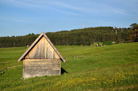shepards: Shepards cabin on green mountain field with conifer trees in background