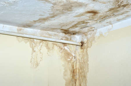 Mold in the corner of the white ceiling and yellow wall, with white rusty heat pipe.