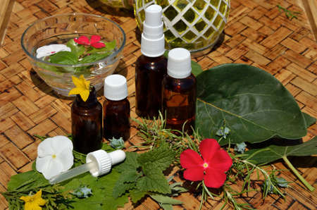 Homeopathy remedies with fresh remedy plants on wooden table