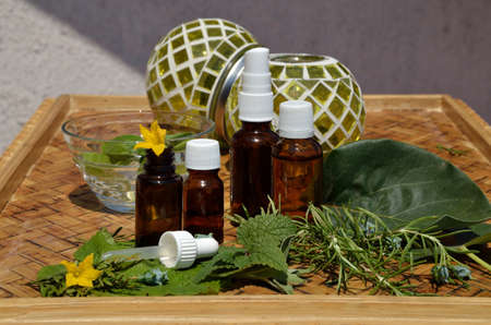 Bottles of homeopathy remedies with fresh remedy plants on wooden table and green glass balls in a background Stock Photo