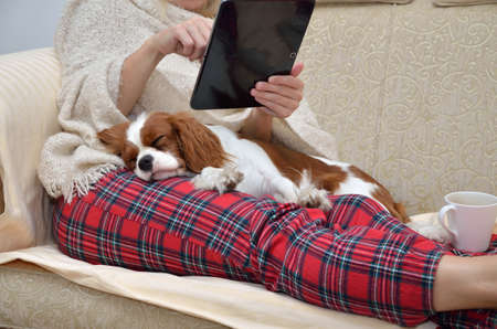 couch: Woman in cozy home wear relaxing on sofa with a sleeping cavalier dog on her lap, holding tablet and reading
