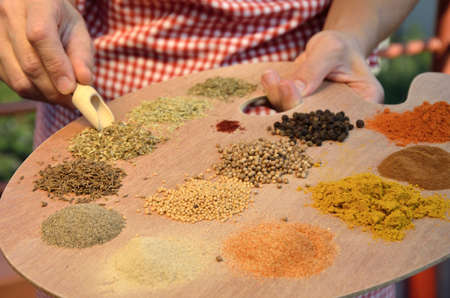 painter palette: Different spices on painter palette in cooks hands