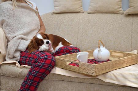 Lady in cozy homewear sitting on sofa, holding her cavalier dog and drinking tea