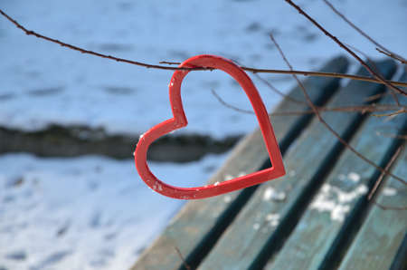plastic heart: Red plastic heart hung on branch of winter tree with snow and park bench in background