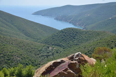 sithonia: Sea bay and lush conifers on hills on Sithonia, Greece Stock Photo