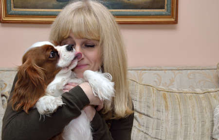 puppy love: Smiling blond woman relaxing, cuddling and kissing her dog, Cavalier King Charles Spaniel (Blenheim) Stock Photo