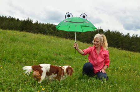 Cavalier King Charles Spaniel Blenheim dog and her lady under green funny umbrella in spring rainy day