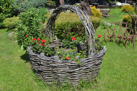 Handmade basket of ethnic look with plants and red flowers on green lawn in a park
