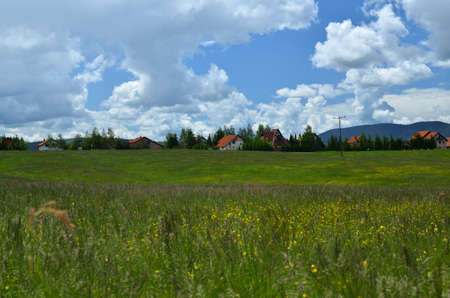serbia landscape: Landscape with private village houses on the edge of a coniferous forest on Zlatibor Mountain in Serbia in cloudy day in springtime