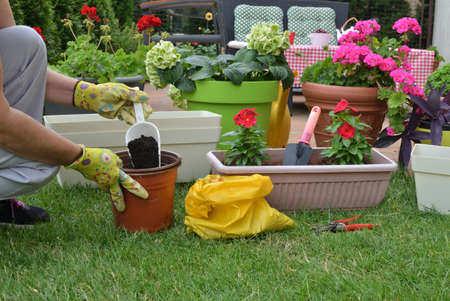 Preparation for re-potting in a lush spring garden full of flowers of different sorts