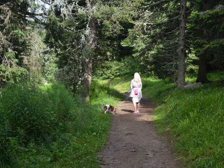 Woman walking with her dog on a path through a forest Stock Photo