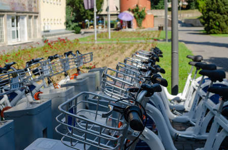 Row of bicycles of the same kind for rent, parked in a public park - close-up