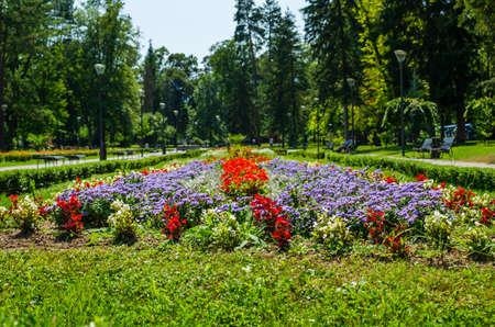 Different kind of flowers in a public park - Vrnjacka Banja, Serbia 写真素材