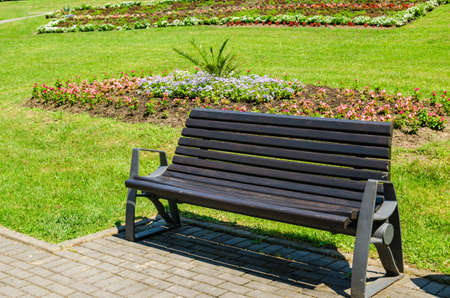 Bench with a tidy lawn in a background on a sunny day - detail from a public park