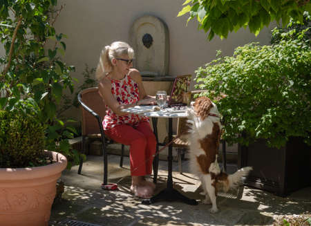 Business woman on holidays casually but elegantly dressed talking on a cell phone and working on a laptop in a company with her pet - Cavalier King Charles Spaniel