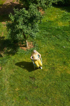 Blond woman reading and relaxing in a garden in spring - shot from above Stockfoto