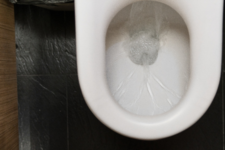 Water drained into the toilet bowl After the technician came to repair a toilet. When its did not flush down. Stock Photo - 82766335