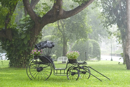 horse carriage in the rain photo